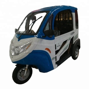 Hot sale 3 wheels closed Electric Car for adult