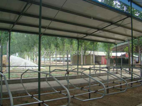 modern advanced automated cattle shed
