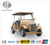 Factory directly supply passenger electric golf cart for sale DFH-LX6E