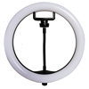 /product-detail/high-quality-plastic-led-ring-light-for-phone-and-dslr-camera-rl-10inch-circle-video-camera-light-62143183328.html