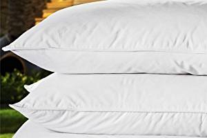 Marriott Hotel Pillow - Feather and Down - Official Marriott Pillow