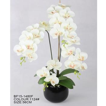 Buatan Bunga Anggrek Putih Pot Tanaman Phalaenopsis Termasuk Hitam Vas Keramik Buy Buatan Anggrek Putih Pot Tanaman Buatan Bunga Buatan Bunga Anggrek Putih Product On Alibaba Com