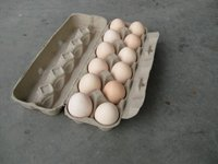 12ct pillo post blank special colour egg box machinery