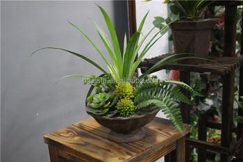 Pabrik Harga Succulents Buatan Grosir Kaktus Pot Mini Plastik Untuk Rumah Atau Kantor Dekorasi Buy Buatan Succulent Tanaman Pot Kaktus Mini
