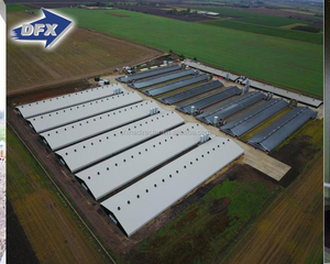 Farming Broiler Chicken House Prefabricated Steel Structure Poultry Warehouse