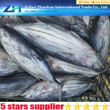 high quality wholesale frozen seafood whole round skipjack tuna