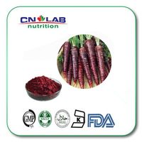 factory supply black carrot extract /black carrot juice/black carrot juice concentrate