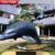 Water Park Outdoor Garden Dolphin Statue for sale