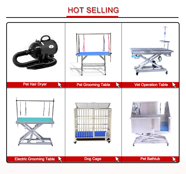 cat best raised dog bed factory for pet hospital-21