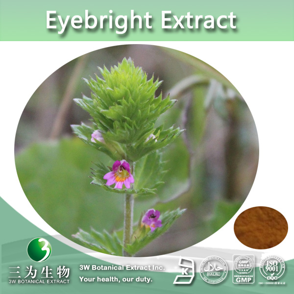 100% Natural Eyebright Extract,Eyebright Plant Extract, Ratio:4:1~20:1