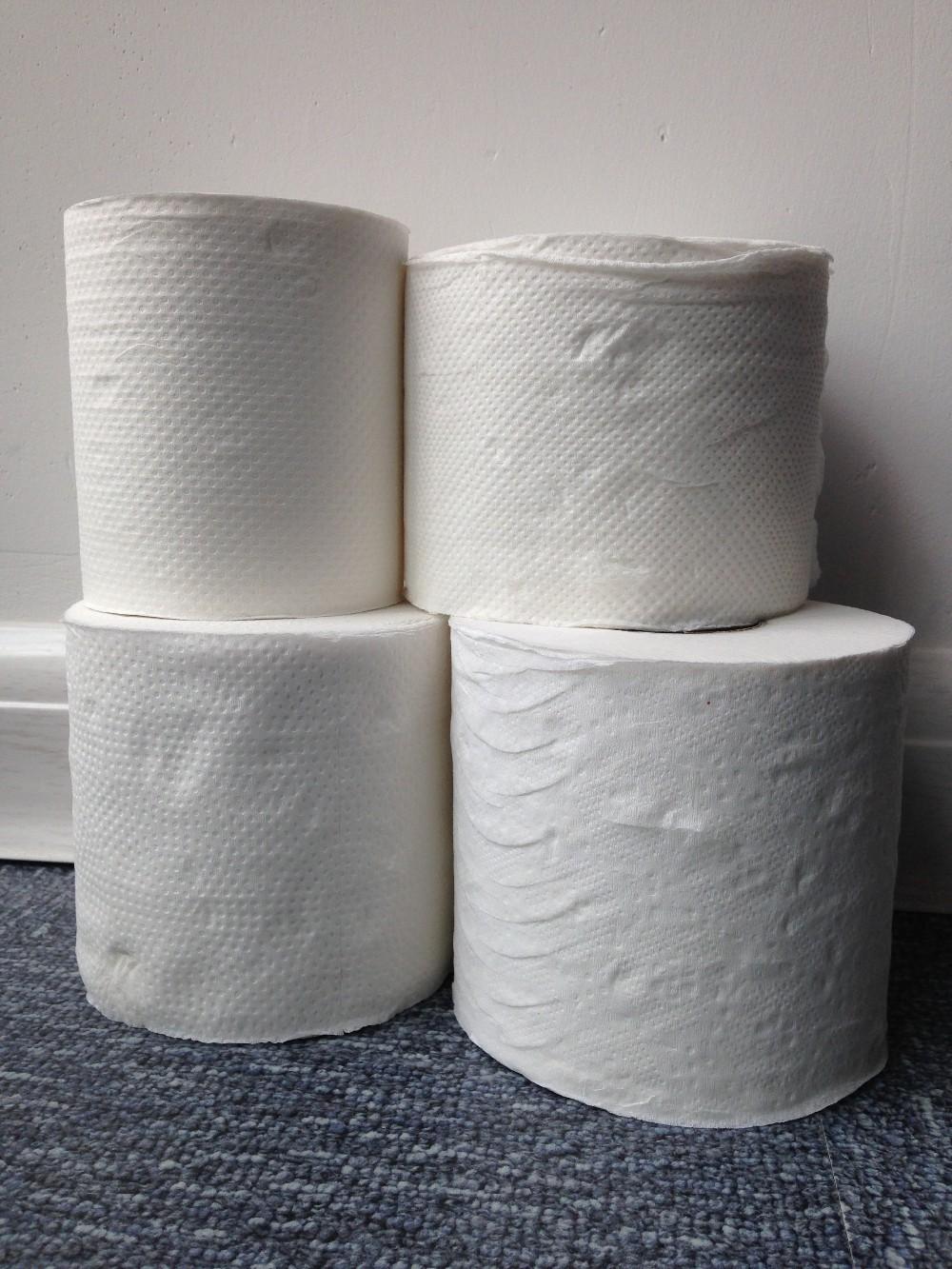 Toilet Paper Rolls Printed Paper Joke Toilet Paper, Toilet Paper ...