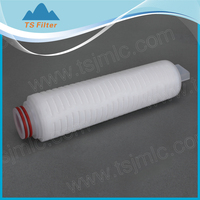 Glass Microfiber(GF) Membrane Pleated Filter Cartridge /High Dirt Holding Capacity