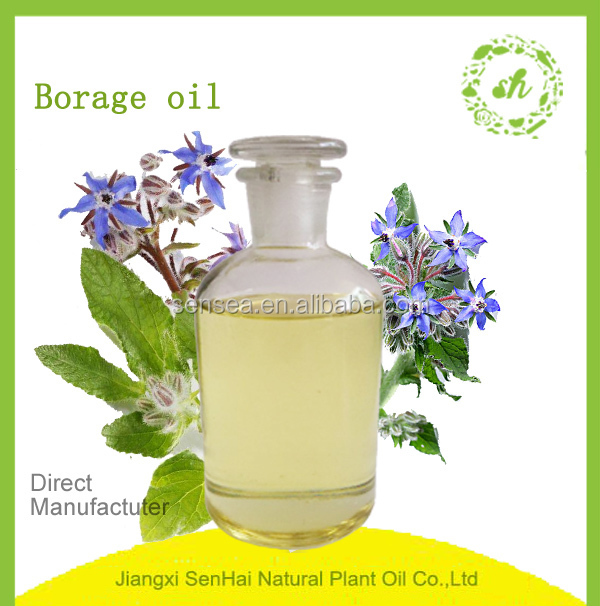 Chinese factory supplier direct sale refined borage essential oil in bulk sale for skin care