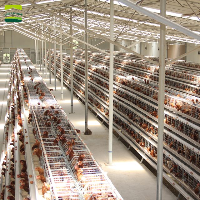 High quality automatic hen house automatic hen house automatic hen house