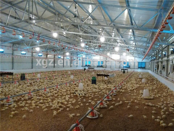 Auto-Control Machine Equipments Steel Structure Poultry Farm Chicken House Supplier
