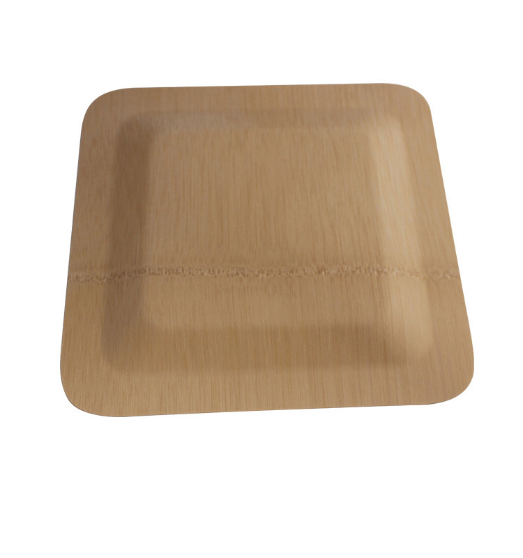 9inch Biodegradable Disposable bamboo square <strong>plates</strong>