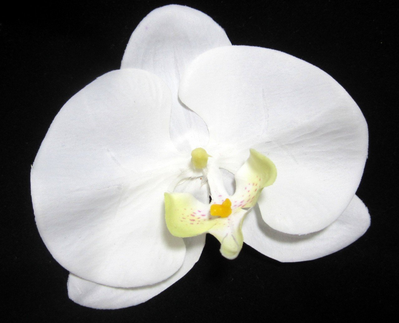 Buy Two White Perfect Real Touch Phalaenopsis Orchid Flower Hair