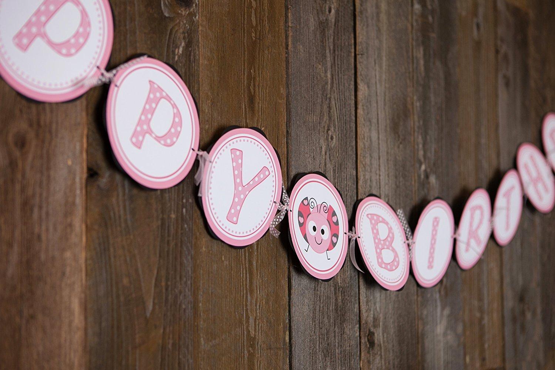 Love Bug Happy Birthday Banner - Valentines Birthday Party Supplies - Kids Birthday Party Banner
