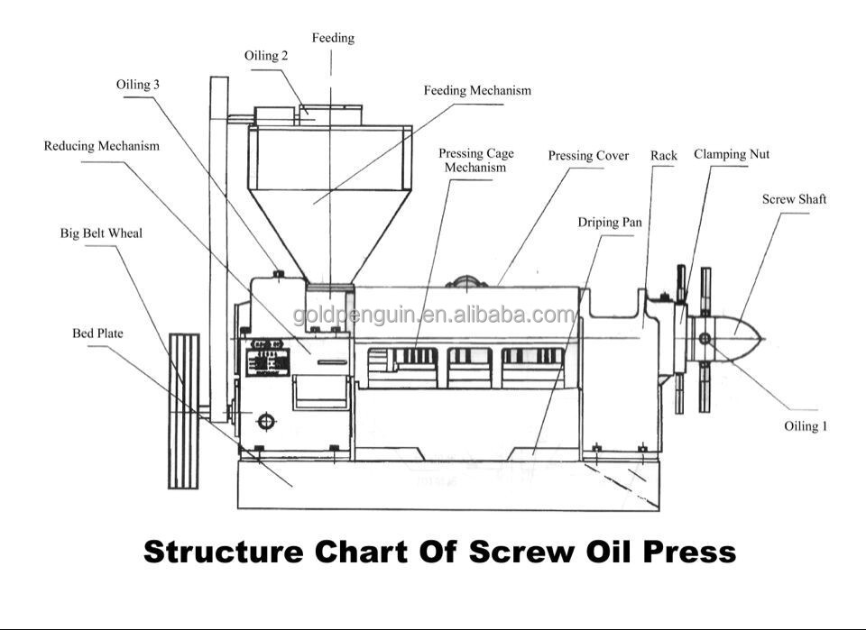 screw press schematic