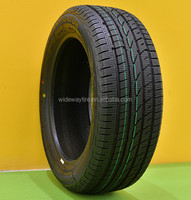 Snow Tyre 195/55R16 with ECE, REACH, LABEL for EU market