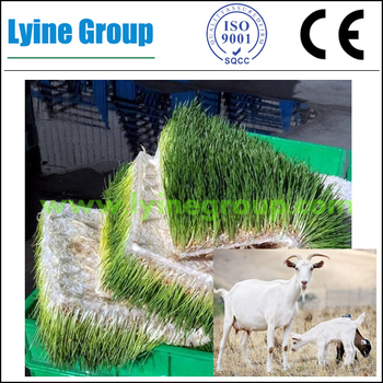 New Design Hydroponic Systems For Sale For Livestock Farm - Buy Hydroponic  Systems For Sale,Livestock Farm,Greenhouse Farm For Sale Product on