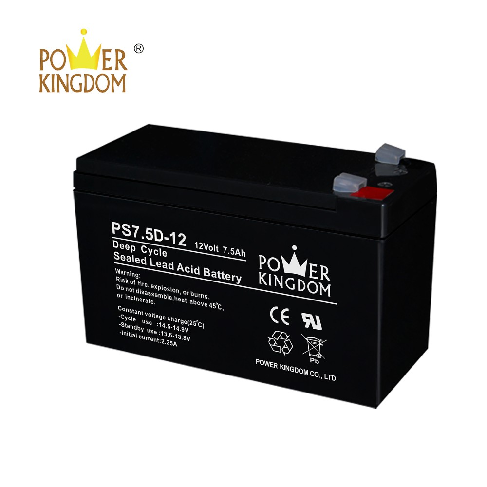 Power Kingdom poles design 8d deep cycle battery personalized deep discharge device-2