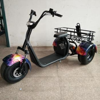 Lithium Battery Three Wheel Electric Motorcycle Scooter