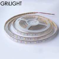 High quality ip67 silicon tube smd 5050 30leds per meter for hula hoop