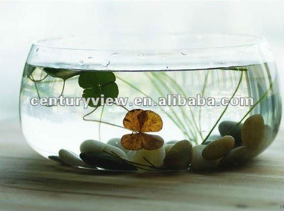 clear high quality glass decorative fish bowl buy decorative fish bowldecorative glass fish bowlsfish aquarium product on alibabacom - Decorative Glass Bowls