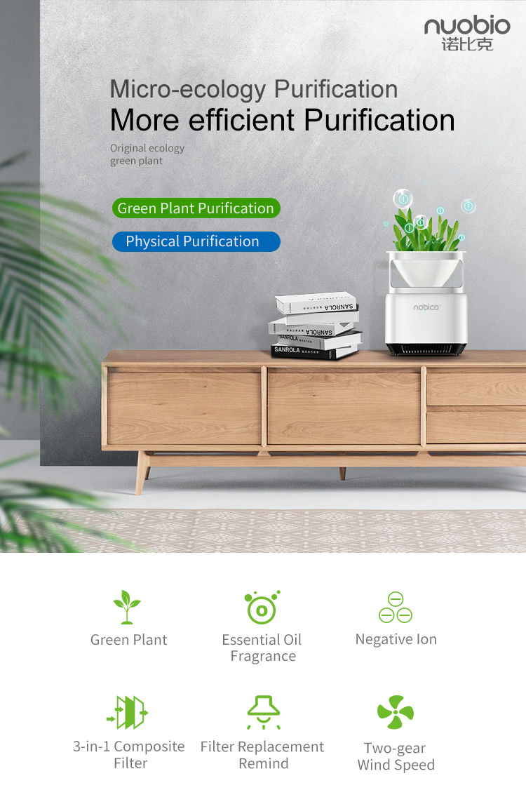 Popular More Eefficient Purification Negative Ion Generator Micro-ecology Green Air Purifier NBO-J009