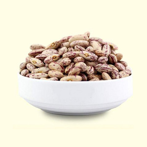 Wholesale cheap price china Light speckled kidney beans pinto bean for export