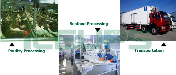 Poultry Seafood processing
