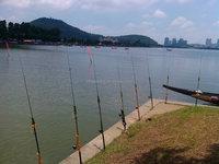 Fly fishing gun for fishing and shooting fish