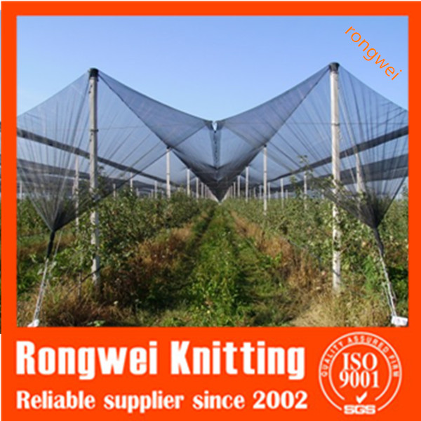 hot sale agricultural PE Anti Hail Net for Orchard Apple