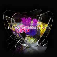 Clear mini plastic fish tank wholesale