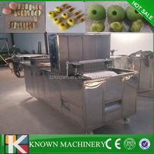 Multi-functional peach pit remove machine,peach pit extractor with stainless steel