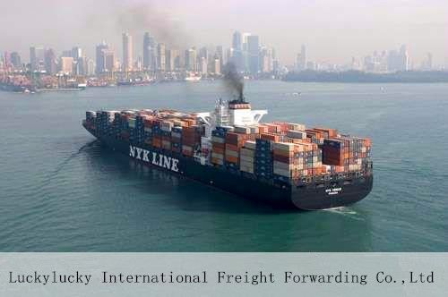cheap and professional sea shipping /ocean freight from china to Algeria Oran