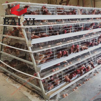 Semi Automatic Layer Cage System