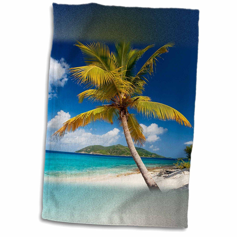 3dRose Danita Delimont - Beaches - Palm Tree on Sandy Island, British Virgin Islands - 12x18 Towel (twl_226531_1)