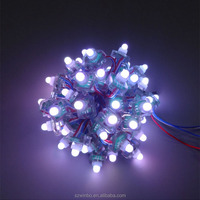 12mm 2Years Warranty ws2811 RGB led point pixel ws2811