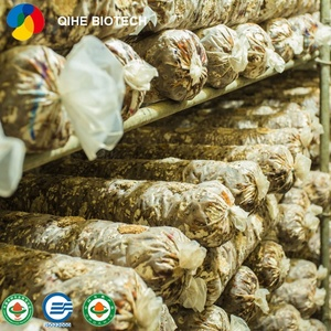 Food Shiitake Mushrooms, Food Shiitake Mushrooms Suppliers