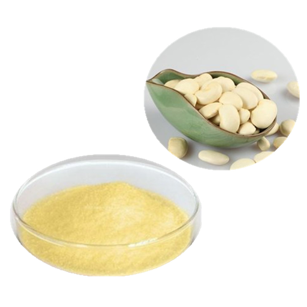 Factory Supply Water soluble White Kidney Bean extract powder