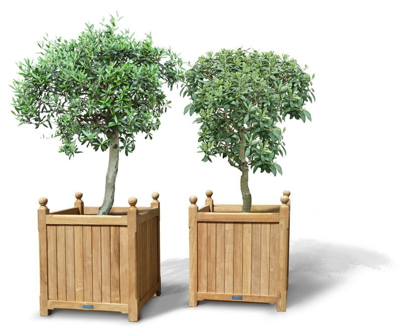 garden home new planters planter dp kitchen amazon com living age wall vertical
