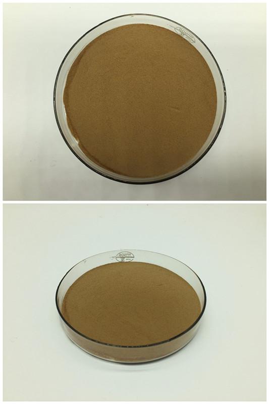 Offres Spéciales Produit Haute Qualité Poria Cocos Extrait