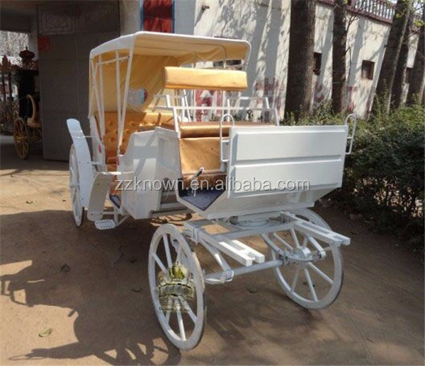 High quality electric sightseeing pumpkin wedding horse carriage