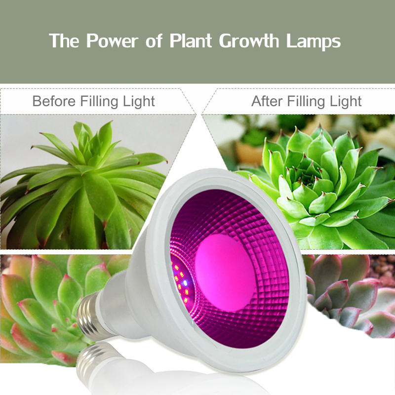 2018 E27 Custom Hydroponic Plant Greenhouse Cob Led Grow Lightgrass vegetable fruit growth light lamps