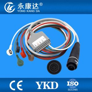 Original integrated 10pin 5lead ecg cable /AHA SNAP