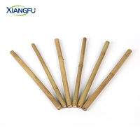 Top Grade 100% dry China bamboo sticks bamboo pole raw