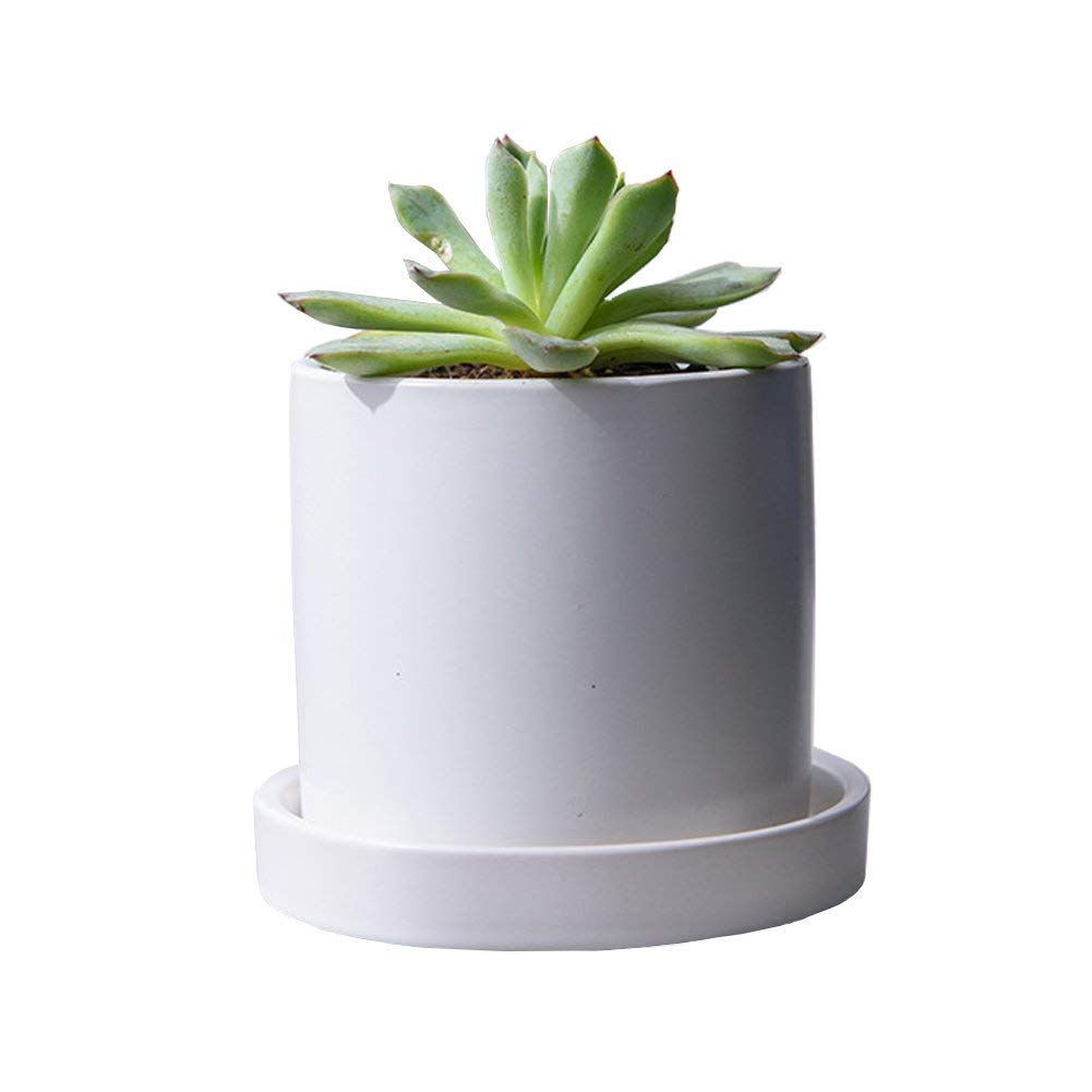 JINMURY4.3 inch Ceramic Matt Surface Cylinder Plant Pots with Drainage Hole and Ceramic Tray, for Succulents, Cactus, Flower Planting (Matt White)
