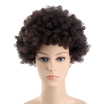 14inch Natural Short Flame Resistant Synthetic Afro Wigs For Black Men And  Women 842bacd5d